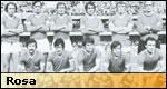 Hellas Verona 1976/77